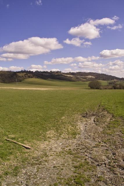 Fields in Wrotham