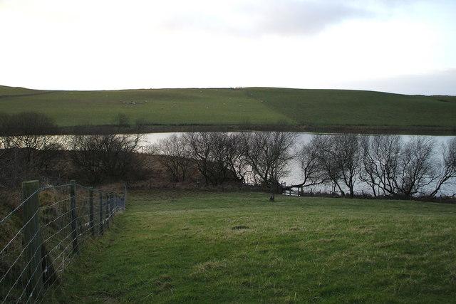 Pond Rhosrydd