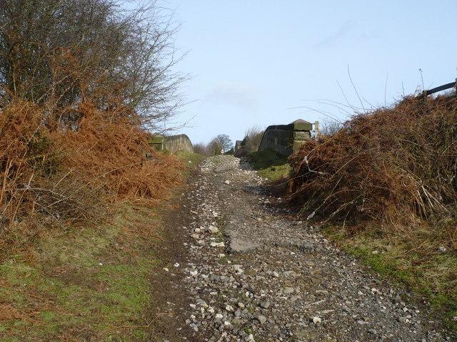 Permissive track over the Esk Valley line railway bridge