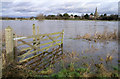 SK4731 : The River Trent - In flood by David Lally
