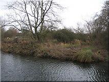 SU7251 : River & Canal by Sandy B