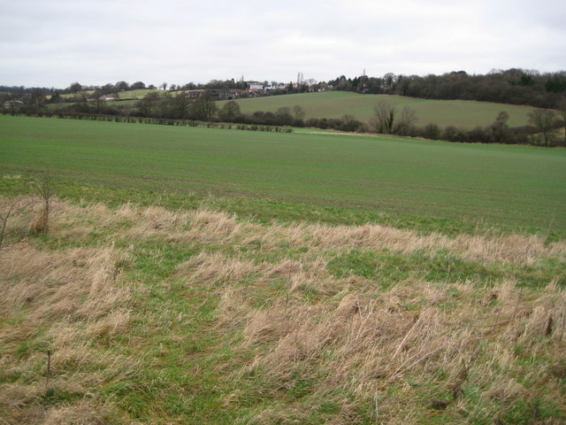 Salmon's Brook valley north of Enfield by Nigel Cox