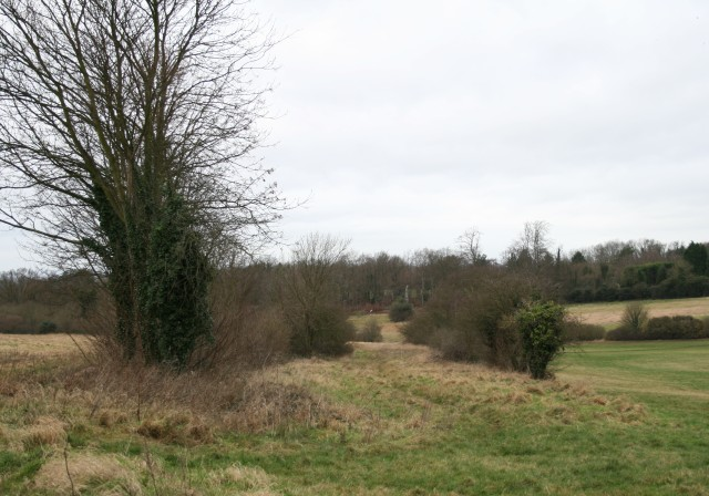 The Old Racecourse