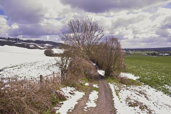 Wrotham Fields in Snow
