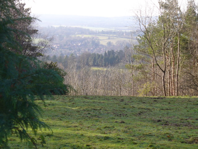 Little Kings Wood Viewpoint