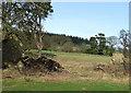SO5188 : Farmland north of Munslow, Shropshire by Roger  Kidd