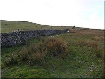 NY8220 : Dry stone wall heading up to Ley Seat by Mick Borroff
