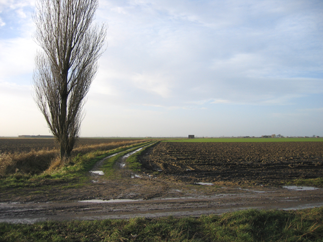 Rush Lane, Swineshead, Lincs