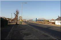 TL4097 : Roundabout on Wisbech Road, Leading to Peas Hill by dennis smith