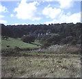 SW9741 : Caerhays Castle and woodland garden by Trevor Rickard