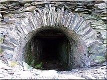 SN0729 : Entrance to access shaft Rosebush Quarry by Rob  Lowe