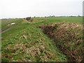TG0407 : Field track following drain by Evelyn Simak