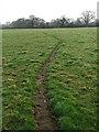 TG0709 : Narrow path by Evelyn Simak