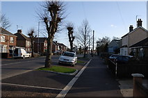 TL4097 : Looking along Wisbech Road by dennis smith