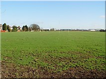 TA0832 : Oak Road Playing Fields, Hull by Peter Church
