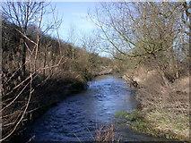 TL4352 : River Granta below Hauxton Mill by Keith Edkins