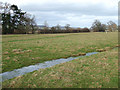 SO5184 : Drainage Channel in Flood Plain Field, Shropshire by Roger  Kidd