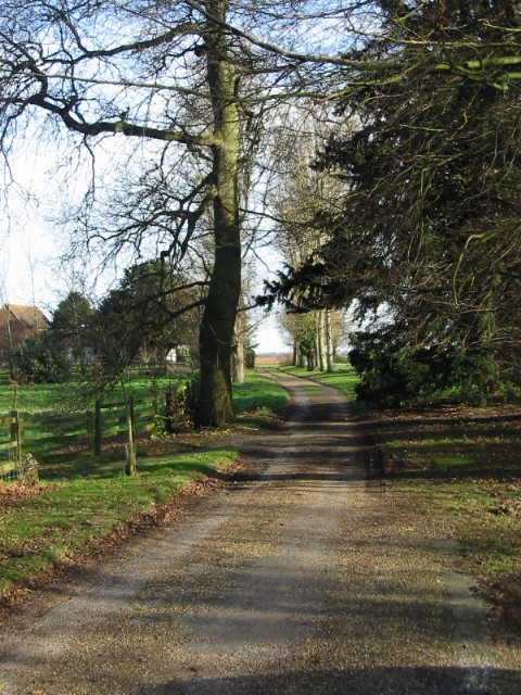 Looking NE along the road from Updown House