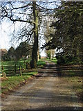 TR3153 : Looking NE along the road from Updown House by Nick Smith