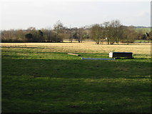 TR3153 : Looking W across the field towards the Eastry bypass by Nick Smith