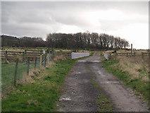 NZ5216 : Farm track and bridge by Stephen McCulloch