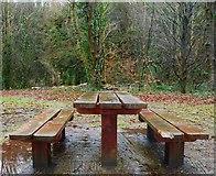J3996 : Picnic table, Glenoe by Albert Bridge