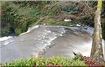 J3996 : Glenoe waterfall (29) by Albert Bridge