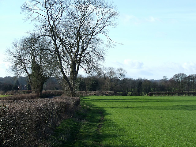 Staffordshire Farmland south of Highgate
