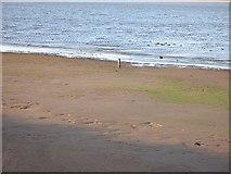 NT6378 : Mudflats, Tyne Estuary by Richard Webb