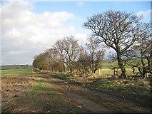 NT4164 : Moor Road by Richard Webb