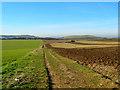 TQ3012 : Bridleway to Pyecombe by Simon Carey