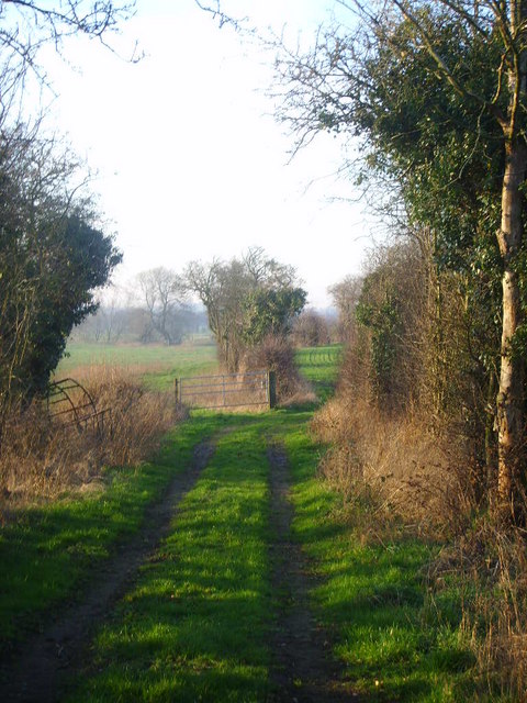 Lane leading uphill behind Stoke Court