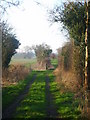 SJ6328 : Lane leading uphill behind Stoke Court by A Holmes