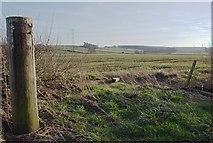 SK3527 : Field near Ingleby by Jerry Evans
