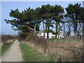 TA2369 : Looking inland to Highcliffe Manor by Nicholas Mutton