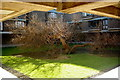 TL4359 : Blasted tree by Fractal Angel