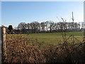 TG3112 : Field beside Honeycombe Road by Evelyn Simak
