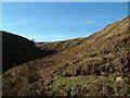 NY9534 : Upper Bollihope Beck by David Brown