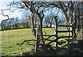 SJ3100 : Footpath to Castle Ring hill fort by Dave Croker