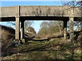 TF9921 : Railway Bridge, GER, North Elmham by Paul Shreeve