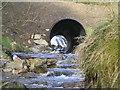 SN8388 : River Severn, Forestry road pipe bridge, Blaen Hafren Falls by kevin skidmore