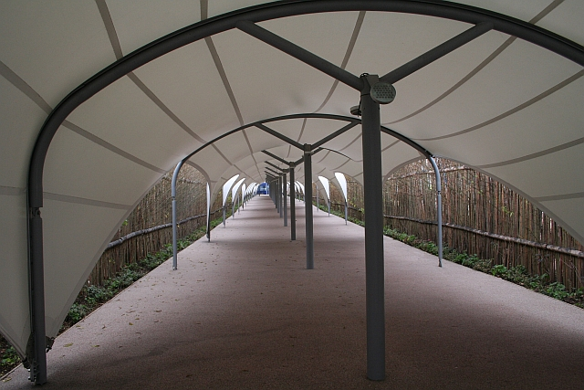 Walkway to the Dome