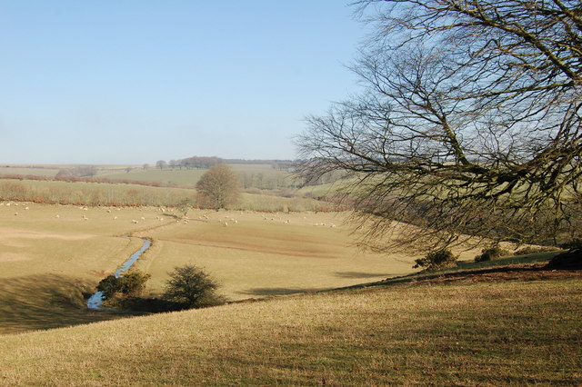 View over sheep field from footpath