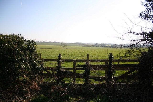 View to High Toynton