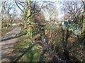 SJ9100 : Smestow Brook - Fowler's Fields by John M