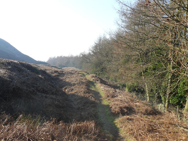 Track at the bottom of Live Moor