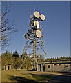 SS9536 : Goosemoor transmitter tower by Rabbi WP Thinrod