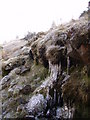 NY5901 : Icicles, Borrowdale by Michael Graham