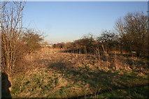 SU5985 : Dumping Ground by Bill Nicholls
