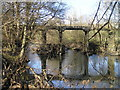 SN9785 : River Severn,wooden disused railway bridge. by kevin skidmore